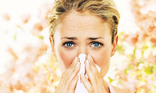 Проблема аллергии на тополь