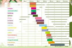 Календарь опыления растений