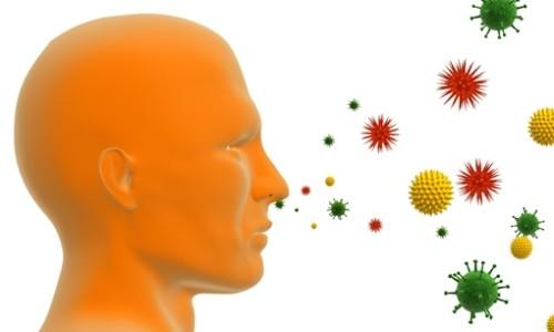 Воздействие аллергена на человека