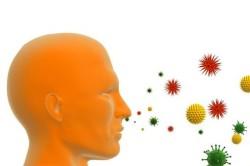 Попадание аллергенов в организм