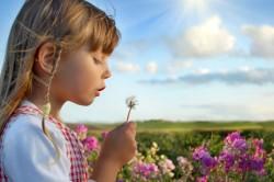 Проблема аллергии на пыльцу
