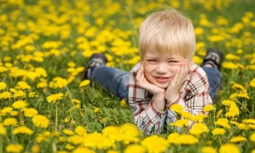Аллергия на цветение растений и деревьев у детей