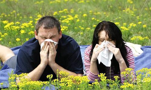 Аллергия на цветущие растения