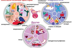Триггеры бронхиальной астмы