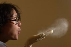 Пыль - причина аллергии