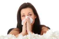 Чиханье - признак аллергии на йоркширского терьера