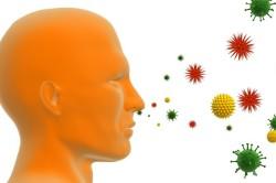 Попадание пыльцы растения в организм