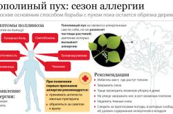 Рекомендации при аллергии на тополиный пух