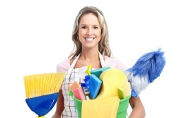 Чистая уборка для профилактики аллергии на йоркширских терьеров