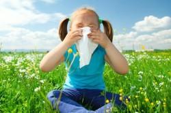 Заложенность носа при поллинозе