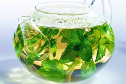 Польза чая из крапивы для лечения аллергии на березу