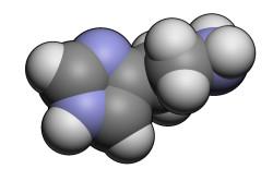 Повышенная выработка гистамина пи аллергии