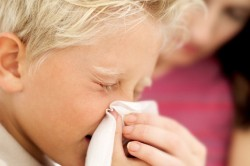 Продолжительный насморк как симптом аллергии