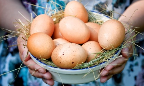 аллергия от яиц симптомы фото