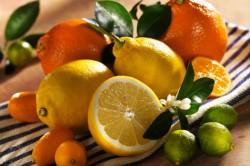 Цитрусовые как пищевой аллерген