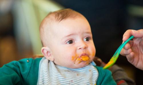 Аллергия на кабачок при прикорме