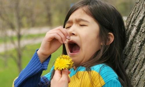 Сезонная аллергическая реакция у детей